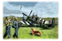 48801 Spitfire Mk.IX with RAF Pilots & Ground Personnel