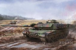 BT-002 Leopard 2A5/A6 Early/Late  Border Model