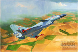 01651 1/72 Chinese J-10B Fighter